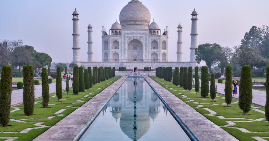 Những chú chó hàng đầu ở Châu Âu tạo nên danh hiệu trên Thị trường sòng bạc trực tuyến đang trỗi dậy nhanh chóng của Ấn Độ