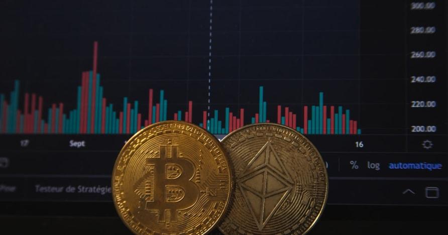 Cờ bạc bitcoin sẽ tăng lên sau khi có thông báo gần đây về PayPal
